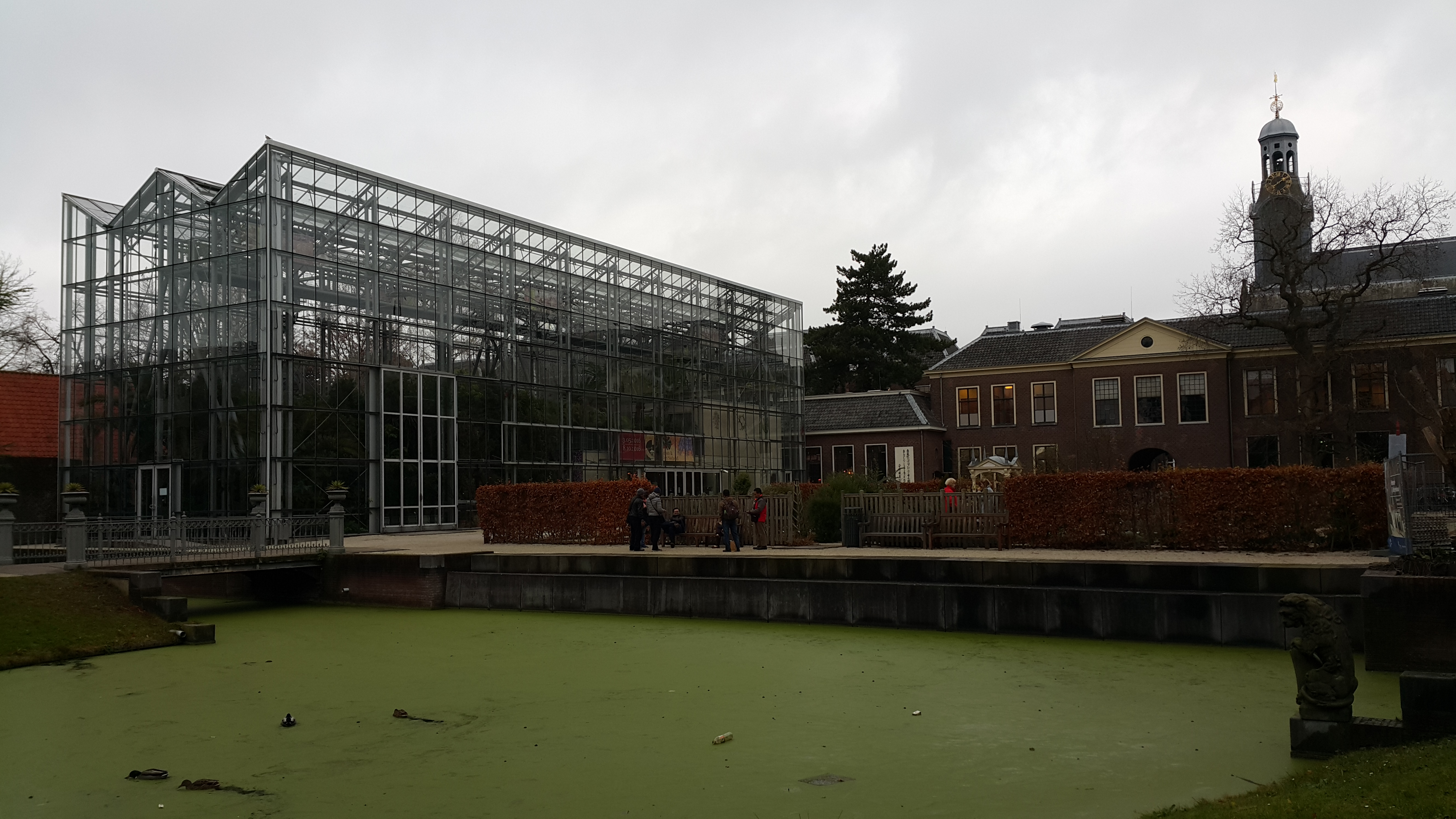 Glasshouse (dok.bhermana)